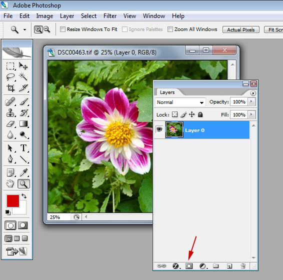 фотошоп как скопировать рисунок
